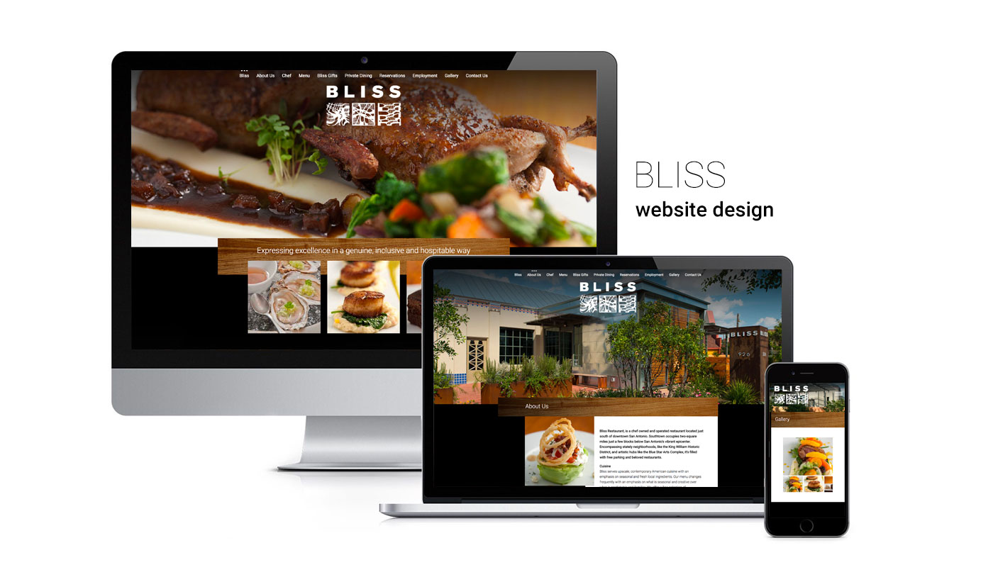 San Antonio Website Design Company